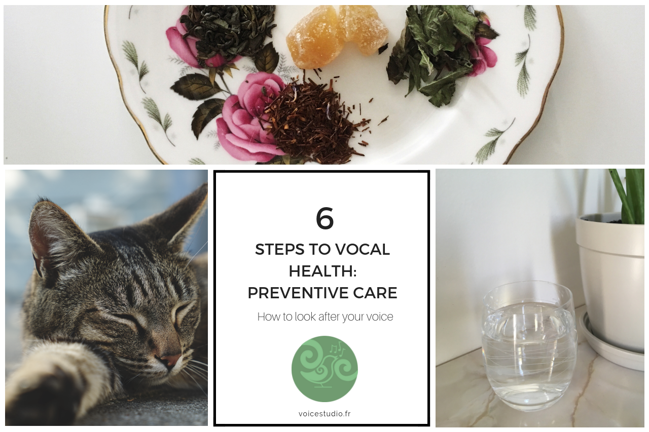 vocal health preventative care part one